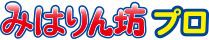 黒球付き熱中症指数計 / 熱中症指数モニター AD-5698 ロゴ画像